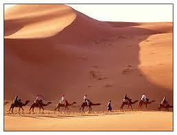 Egypt desert caravan